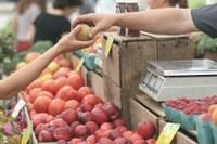 In Emilia-Romagna è di 2.900 euro la spesa familiare media mensile per consumi nel 2018. Il 5,4% delle famiglie vive in condizioni di povertà relativa.